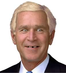 bush is a blonde